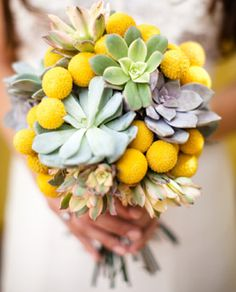 Pastel Succulents and Craspedia Bouquet. We love the contrast in both texture and strong neutral compared to the bright yellow Billy Button.