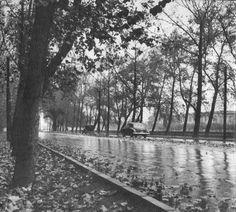 Parque Forestal, Santiago, Chile (1956) Picture by @FotosHistóricasDeChile Railroad Tracks, Past, Architecture, Places, Travel, Mom, Santiago, Historical Photos, Cute Pictures