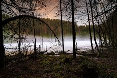 Explore Janne.'s photos on Flickr. Janne. has uploaded 3602 photos to Flickr.