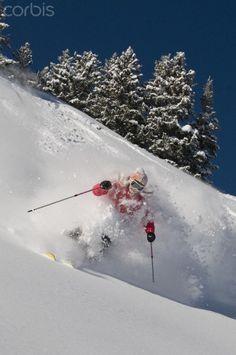 Skiing Powder at the Alta Ski Resort #skiing #travel #vacation   www.avacationrental4me.com
