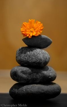 Create a zen space with rocks and a flower. This can be done anywhere..in your office, home office, bathroom or bedroom.