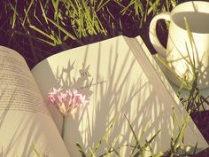 tea and books and sun and grass :)