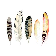 Watercolor Art. Feather Print.