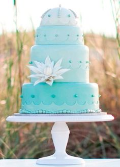 I like this cake's COLOR