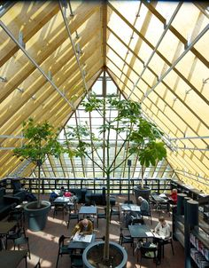 Beautiful Glass Mountain Library - In the market square of Spijkenisse, Netherlands, a mountain of bookshelves is contained by a glass-enclosed structure and pyramidal roof. Corridors and a cafe have panoramic views through the transparent roof.