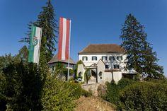 Das Schloss Kapfenstein in der Region Bad Gleichenberg #badgleichenberg #regionbadgleichenberg Berg, Volcanoes, Road Trip Destinations, Landscape, Vacation