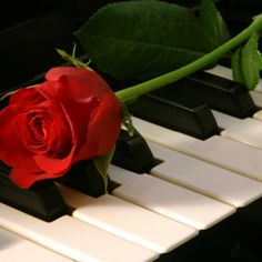 Romantic piano music by Emperor Of Love   Free Listening on SoundCloud