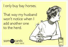 Anyone else?? | The Carousel Horse | carouselhorsetack.com