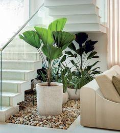 A reunião com licualas, pacovás e íris ficou bem instalada embaixo da escada neste recorte de 4 m² de jardim pensado pelo paisagista Gil Fialho