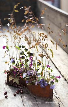 """Julian Tonnellier illustre la """"rouille romantique"""" avec cette plaque de tôle rouillée, soudée avec des pipettes pour hydrater les nicandras physaloïdes, fruits de nigelles, clématites, brizas, hypericums, hydrangéas, heuchères, pommes, cotinus. Création extraite du Carnet d'Idées #Interflora ! #artfloral #fleurs"""