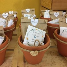 Discover summer that is wonderful favors that are sure to be a big hit with your guests! Seed Wedding Favors, Succulent Wedding Favors, Creative Wedding Favors, Wedding Gifts For Guests, Rustic Wedding Favors, Wedding Favors For Guests, Baptism Favors, Baptism Party, Baby Shower Favors