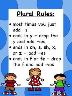 Anchor Chart for Plurals