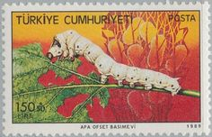 Francobollo: Silkworm (Bombyx mori) (Turchia) (Industria del Baco da seta) Mi:TR 2852,Sn:TR B226