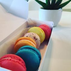 I finally satisfied my macaron fix! For now at least . . #raspberry #orange #mint #lemon #rose #rainbow #macarons #macaron #cookies #bakery #dessert #cafe #french #rockville #local #Foodpics #instafood #foodporn #foodie #instafood #dinner #foodgasm #nom #foodbaby #instadaily #foodphotography  #음식 #먹방 #디저트 #맛집 #먹스타그램