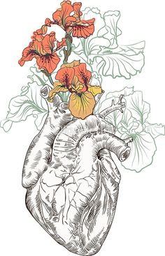 drawing Human heart with flowers by OlgaBerlet   Pinteres