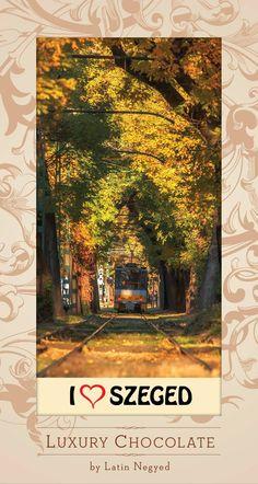 Szeretlek Magyarország Luxury Chocolate, Painting, Art, Art Background, Painting Art, Kunst, Paintings, Performing Arts, Painted Canvas
