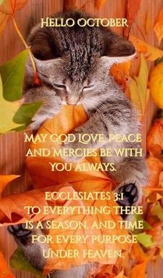 Autumn Animals, Hello October, Gods Love, Of My Life, Peace And Love, Seasons, Lord, Favorite Things, Love Of God