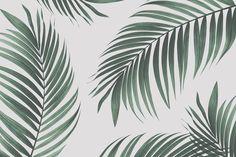 Sentez passer le souffle des tropiques dans votre maison avec notre Décoration murale palmier tropical. Transformez n'importe quelle pièce en paradis tropical avec ce papier peint organique. Ce produit est une photographie en vue rapprochée, fortement filtrée, d'une fausse plante qui crée un fascinant style minimaliste pour cette décoration murale botanique plus grande que nature.
