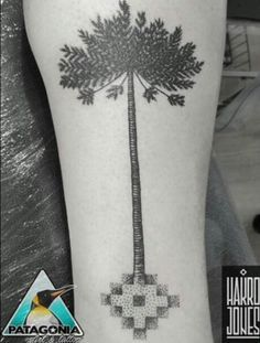 Resultado de imagen de tatuaje araucaria Blackwork, Ink, Chile, Tattoos, Pattern, Deco, Google, Canela, Tattoo Designs