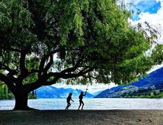 Summer in Queenstown. Miss the good time . photo by Tree Photography, Iphone Photography, Time Photo, New Zealand, Journey, Good Things, Mountains, Landscape, World