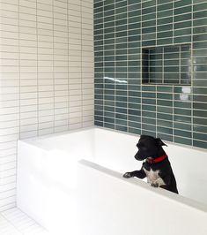 Think Outside the Subway: 17 Bathroom Tile Ideas & Trends Blue & White Bathroom Subway Tile / Rustic Bathroom Vanities, Bathroom Red, Boho Bathroom, Bathroom Faucets, Bathroom Furniture, Bathroom Interior, Small Bathroom, Bathroom Ideas, Bathroom Inspo