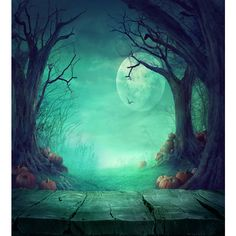 Halloween Photography Backdrops Wood Floor Pumpkin Backdrop For Photo... ($22) ❤ liked on Polyvore featuring backgrounds