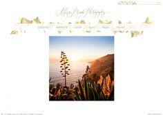 dstripe - Allyson Magda Photography websites