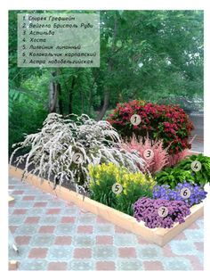 Give your yard a fresh look this time with these beauty garden design ideas. Front Yard Garden Design, Small Front Yard Landscaping, Backyard Landscaping, Landscaping Ideas, Backyard Ideas, Small Garden Landscape, Landscape Design Plans, Evergreen Garden, Rock Garden Plants