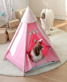Pet house pet tent dog house small indian tent