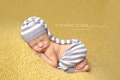Blog « Caralee Case Photography