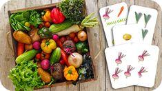 Jeu de cartes : Halli Galli les légumes