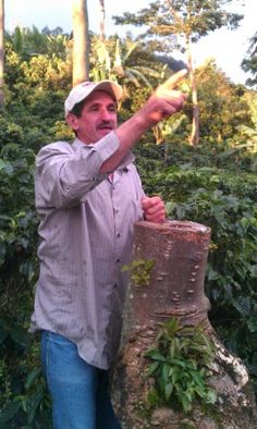 FARM-TO-TABLE MOVEMENT TO THE WORLD OF CHAMPIONSHIP COFFEE. Exciting stuff!
