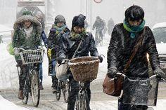 Copenhagen February Traffic - Cycling in Winter in Copenhagen
