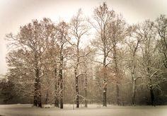 Winter impressionen  no3
