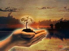 Gratidão por cada semente de bem que germina no solo fértil dos nossos corações***
