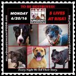 TO BE DESTROYED 6/20/16