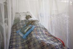 La malaria en Venezuela puede alcanzar casi los 350 mil casos a finales de 2016 ya que la cifra acumulada hasta agosto de este año aumentó 72 % con respecto al mismo periodo de 2015, según datos ofrecidos hoy por la ONG Observatorio Venezolano de la Salud (OVS).</p>
