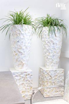 shell planters and pedestals by fleur ami ● Pflanzgefäße und Säulen von fleur ami