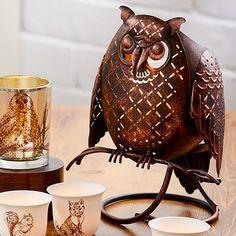 Rustic Owl Jar Holder