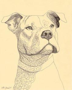Dogs Drawings Pitbull - Pets For U