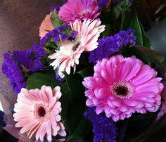 Sweet pink gerbera daisies