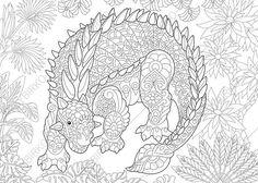 Dinosaur Ankylosaurus Adult Coloring Book Page. Zentangle