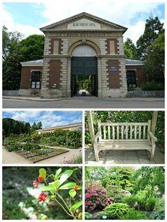Botanische tuin Leuven Kruidtuin België