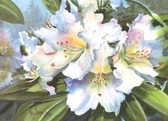 White Rhodies by Kay Barnes - demonstrates her method for painting realistic Rhododendrons