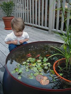 Garden Water Feature - Pop Up Pond Aquarium Garden Water Feature - Pop Up Pond. An aquarium constructed from a special polymer material. You can now set up a beautiful water garden or stunning outdoor aquarium