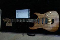 Suhr Reb Beach Standard Guitar Accessories, Beautiful Guitars, Jimi Hendrix, Music Instruments, Beach, Seaside, Musical Instruments