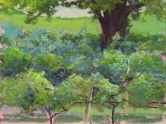 Vines and a Tree - 9x12 Pastel Plein Air -- $100 Studies Priced. This painting was done on location at Crane Creek Vineyard near Young Harris GA. It was a rainy day, and I was under a pavilion and this was all I could see!