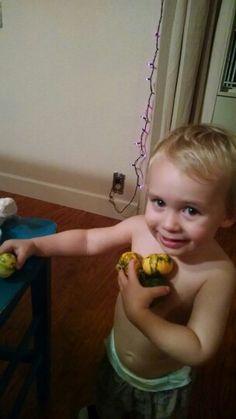 Harrison loves pumpkins
