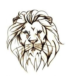 drawings of lions - Google Search