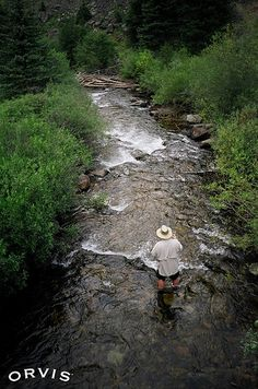 Fly Fishing - Mill Creek